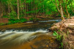 Kaskady na Tanew rzece Zdjęcie Royalty Free