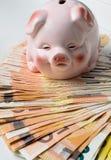 KASSA för euro 50 med det keramiska svinet Royaltyfria Foton