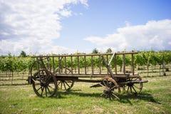 Kasserad hästvagn med brutna hjul Royaltyfria Bilder