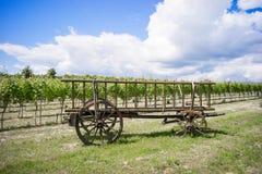 Kasserad hästvagn med brutna hjul Royaltyfri Bild