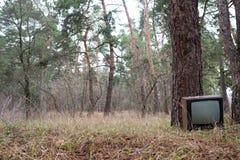 Kasserad televisionuppsättning i stiftskogen royaltyfria bilder