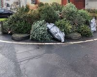 Kasserade julträd som travas på trottoarkanten Royaltyfri Foto