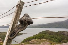 Kasserade trekking skor på försett med en hulling - binda, Balny Skottland Arkivbilder