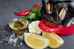 Kasserolle mit Miesmuscheln, Zitronen, Paprikapfeffer und Gewürzen lizenzfreie stockfotografie