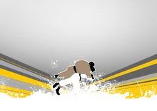 kasta för judo Royaltyfri Foto