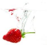 Kasta jordgubbarna in i vatten på vit bakgrund Royaltyfri Bild