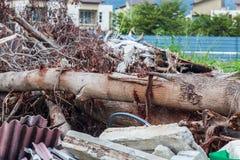 Kasta platsen som indikerar katastrof som tsunami, jordskalv, tromb och tyfon royaltyfri bild