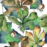 Kastanie lässt Muster in einer Aquarellart Lizenzfreies Stockbild