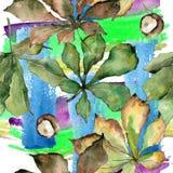 Kastanie lässt Muster in einer Aquarellart Lizenzfreie Stockfotos