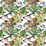 Kastanie lässt Muster in einer Aquarellart Lizenzfreie Stockfotografie