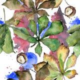 Kastanie lässt Muster in einer Aquarellart Stockbild