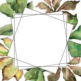 Kastanie lässt Rahmen in einer Aquarellart Lizenzfreie Stockfotos