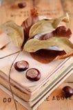 Kastanien auf Weinlesebuchstapel Stockfotografie