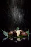 Kastanien, die in der Dunkelheit rauchen Stockbilder