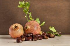 Kastanien und Granatäpfel stockbilder