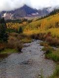 Kastanienbraune Bell im Herbst Stockbild