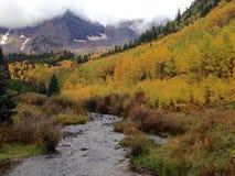 Kastanienbraune Bell im Herbst Stockfotografie