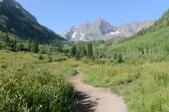 Kastanienbraune Bell, Rocky Mountains, Colorado Lizenzfreies Stockbild