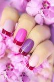 Kastanienbraune rosa mehrfarbige französische Maniküre stockbild