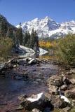 Kastanienbraune Schönheiten Colorado Lizenzfreies Stockfoto
