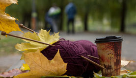 Kastanienbraunes Garn, Nadeln und Tasse Kaffee sind auf der Bank im p Lizenzfreie Stockbilder
