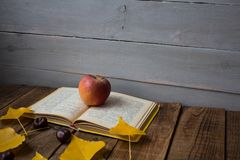 Kastanj för sidor för öppet bokäpple en gul på träbakgrund royaltyfri fotografi