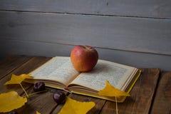 Kastanj för sidor för öppet bokäpple en gul på träbakgrund arkivbild