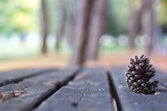 Kastanje op een houten lijst Stock Fotografie