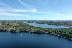 Kastanjebruin Massabesicmeer, New Hampshire royalty-vrije stock fotografie