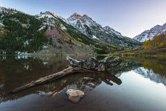 Kastanjebruine Klokkenzonsopgang Aspen Colorado Stock Foto's
