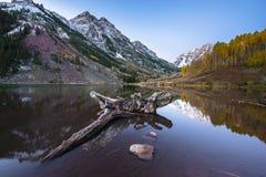 Kastanjebruine Klokkenzonsopgang Aspen Colorado Stock Fotografie