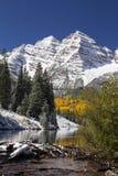 Kastanjebruine Schoonheden Colorado Royalty-vrije Stock Afbeeldingen