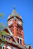 Kastanjebruine Universiteit Royalty-vrije Stock Foto