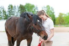 Kastanjebrun häst samman med hennes unga tonårs- gi för favorit- ägare arkivbild