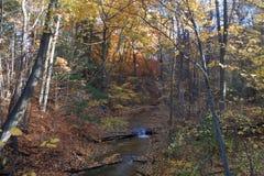 Kastanjebrun Ridge vattenfall Arkivfoto