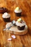 Kastanjebruna Mont Blanc Cupcakes Royaltyfria Foton