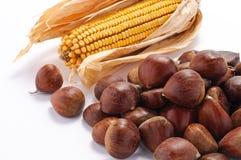 Kastanjes en graan Stock Foto