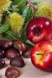 Kastanjesegel met appelen Royalty-vrije Stock Afbeeldingen