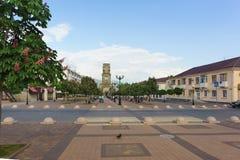 Kastanjeweg op de Boulevard Chernyakhovsky, de stad van Novorossiysk royalty-vrije stock afbeeldingen