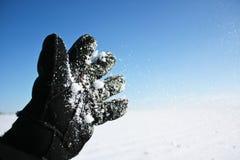 kastar snöboll Arkivfoton
