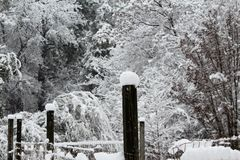 Kastar snöboll på staketet Posts Royaltyfri Foto