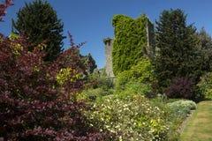 Kasteel Kennedy en tuinen Royalty-vrije Stock Afbeeldingen