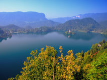 Afgetapt meer, Slovenië, Europa Royalty-vrije Stock Afbeelding