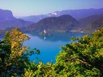 Afgetapt meer, Slovenië, Europa Stock Foto