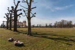 Kasteel Moritzburg dichtbij Dresden royalty-vrije stock afbeeldingen