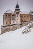Kasteel in Pieskowa Skala (Polen) Stock Fotografie