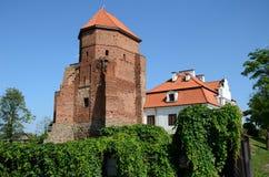 Kasteel in Polen Royalty-vrije Stock Afbeelding
