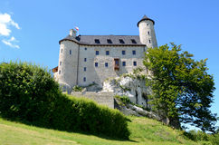 Kasteel in Polen Royalty-vrije Stock Foto's