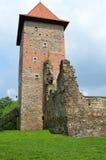 Kasteel in Polen (Chudow) Royalty-vrije Stock Foto