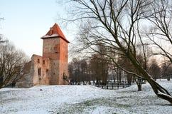 Kasteel in Polen Chudow Stock Foto's